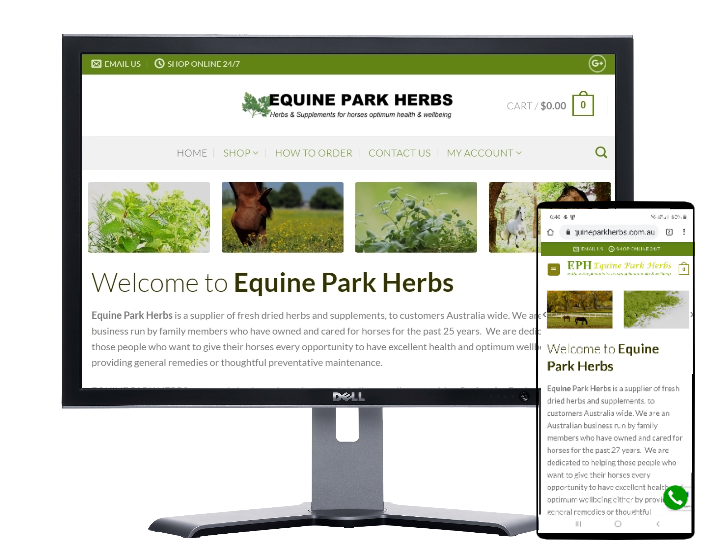 equine park herbs by Fast Cheap Websites